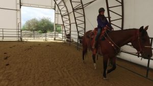 Riding Arena Big Open Door
